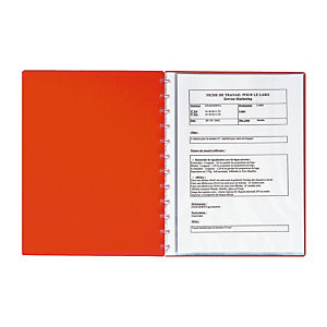 Exacompta Protège-documents à anneaux  - 30 pochettes - Assortis