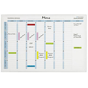 Exacompta Tableau planning mensuel effaçable à sec mensuel, Magnétique, 600 cm x 900 cm