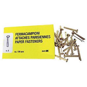 Fermacampioni in ottone - Lunghezza 35 mm (confezione 100 pezzi)