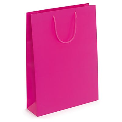 Fuchsia matt laminated gift bag