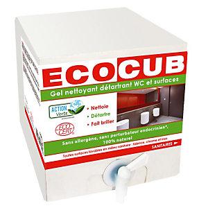 Gel nettoyant détartrant surfaces et toilettes Ecocub Action Verte, boite de 10 L