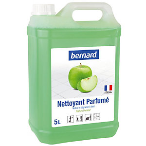 Geparfumeerde HACCP-reiniger Bernard appel 5 L