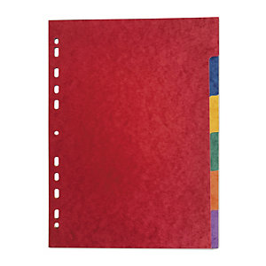 Intercalaire carte lustrée et polypropylène