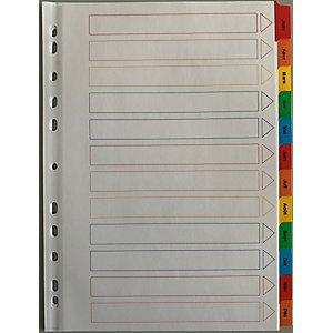 Intercalaires mensuels A4 en bristol 12 divisions - Blanc touches colorées