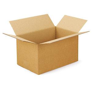 Kartonnen doos in enkelgolf 30x20x17 cm