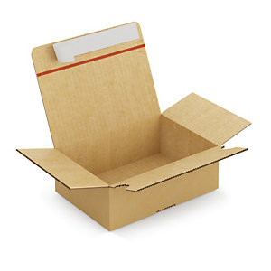 Kartonnen doos met automatische bodem 21,5x15,5x11 cm, per set van 20
