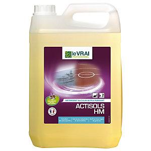 Krachtig ontvettend detergent Le Vrai Actisols HM, 5 L