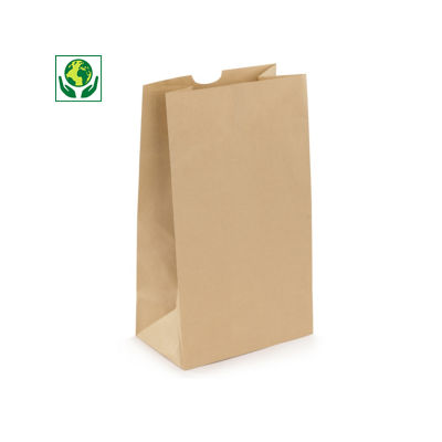 Sac papier kraft##Kraftpapieren zak