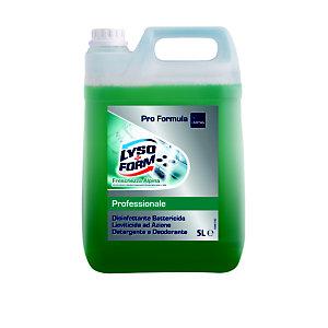 Lysoform Detergente Professionale Multiuso Purezza Alpina, Tanica 5 l