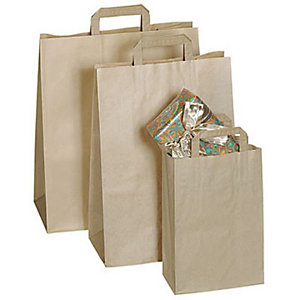 Marque generique 250 sacs kraft brun  26 x 36 x 10