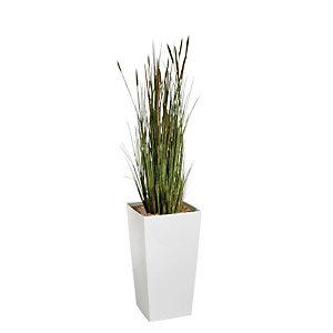 Marque Generique Plante artificielle d'intérieur - Zanichellie