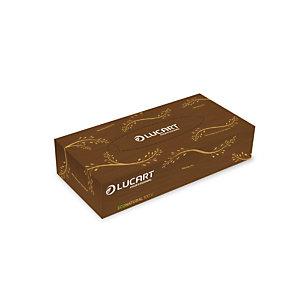 Mouchoirs Econatural, 40 boîtes de 100 mouchoirs