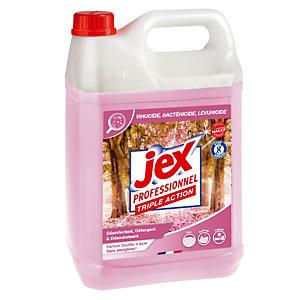 Nettoyant désinfectant HACCP Jex Professionnel Express Souffle d'Asie 5 L