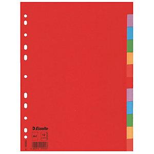 Pakje van 2 tabbladen 12 kleur neutrale tabs Esselte in gerecycleerd karton A4 formaat