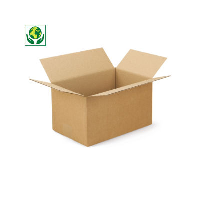 Caisse carton palettisable brune simple cannelure##Palletiseerbare kartonnen dozen in enkelgolfkarton