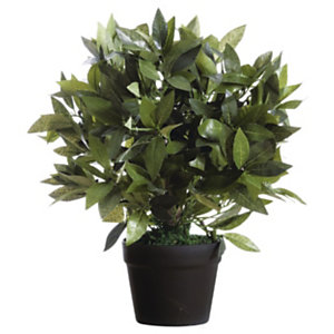 Paperflow Planta artificial Laurel, 50 cm