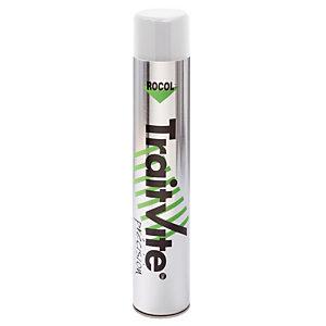 Peinture TraitVite Précision blanche, aérosol 1000 ml