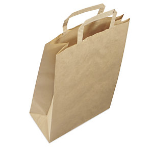 Plain brown paper carrier bags with folded handles