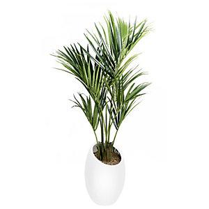 Plante artificielle - Composition palmier - Pot ovale blanc