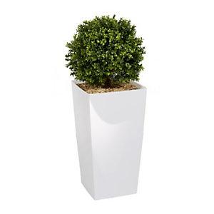 Plante artificielle d'intérieur - Buis