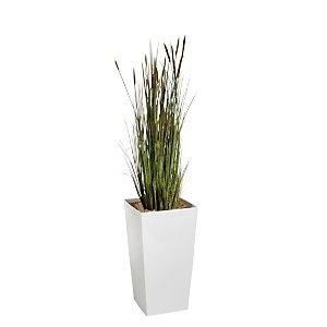 Plante artificielle d'intérieur - Zanichellie