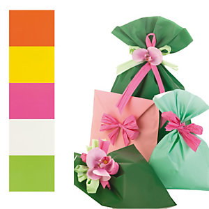 PNP Buste regalo Mat Pearly B - in PPL - assortimento 5 colori - 20 x 35cm - PNP - conf. 100 buste