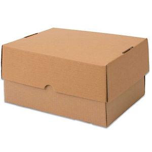 Pressel 20 telescopische verpakkingen, bruin, 305x215x150mm
