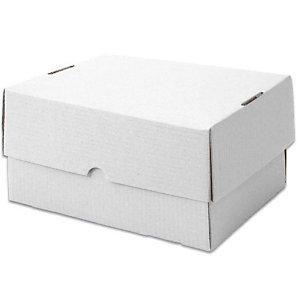 Pressel 20 telescopische verpakkingen, wit, 305x215x100mm