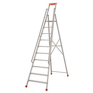 Professionele Tubesca ladders 10 treden