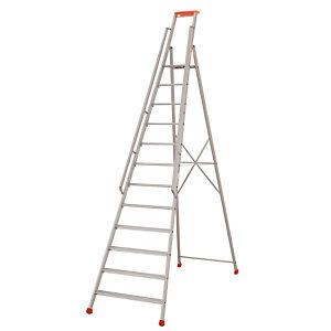 Professionele Tubesca ladders 12 treden
