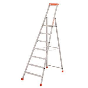 Professionele Tubesca ladders 7 treden