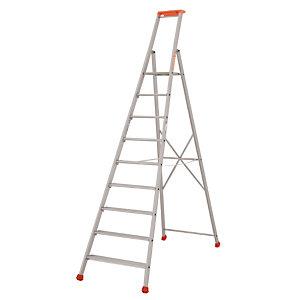 Professionele Tubesca ladders 9 treden