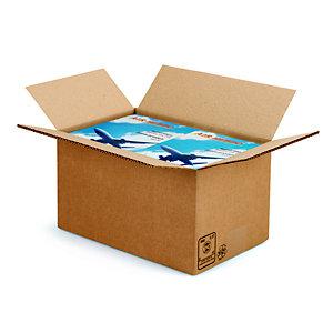 RAJA Caisse américaine carton double cannelure - L.int. 30 x l.20 x h.17 cm - Kraft brun