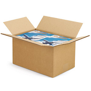 RAJA Caja embalaje canal doble 300 x 200 x 170 mm (largo x ancho x alto)