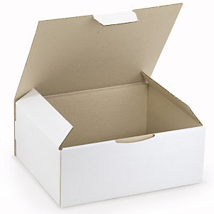 RAJA Caja postal de cartón 250 x 200 x 100 mm (largo x ancho x alto) blanca