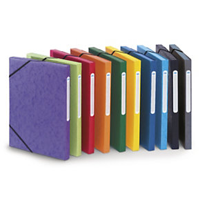 RAJA Chemise à élastiques 3 rabats - Carte lustrée 5/10 - Format 24 x 32 cm - Dos 2,5 cm - Avec étiquette - Coloris Assortis Toniques