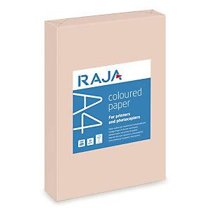 RAJA Coloured Paper Papel de Colores para Faxes, Fotocopiadoras, Impresoras Láser e Impresoras de Inyección de Tinta Salmón Pastel A4 80 g/m²