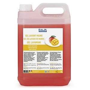 RAJA Detergente gel lavamani, Profumazione Frutti esotici, Tanica 5 l
