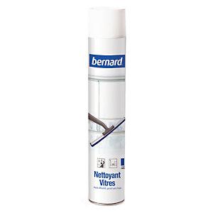 Ruitenreiniger Bernard, spuitbus van 750 ml
