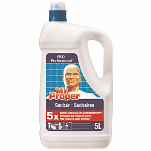 Sanitairreiniger Mr Propre 5 L
