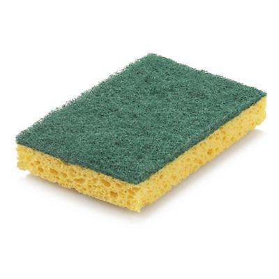 Schwamm Eco