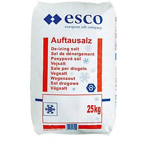 Sneeuwvrij zout zak van 25 kg