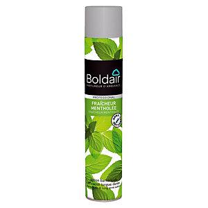 Désodorisant aérosol bactéricide parfum menthe Boldair, 500 ml
