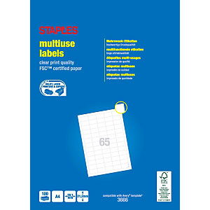 Staples Etiquetas multiuso, 38,1 mmx21,2 mm, 65etiquetas por hoja, blancas