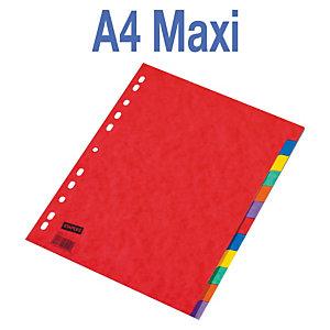 Staples Separadores, A4+, cartón prensado, 12 pestañas, colores surtidos