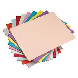 Staples Subcarpeta de papel 60 g/m² surtido pastel