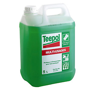 TEEPOL Bidon de détergent liquide multi-usage vert 5l