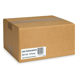 Étiquette polyvalente Boîte 500 planches RAJA