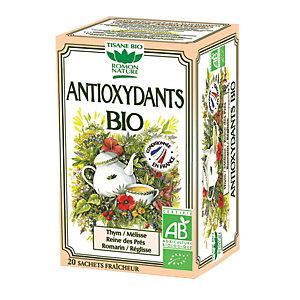 Tisana Antiossidante Bio Romon Natura, 20 filtri