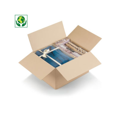Déstockage : Caisse simple cannelure à fond automatique##Uitverkoop: Enkelgolfdoos met automatische bodem